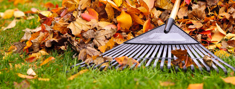 The Ultimate Fall Yard and Patio Cleanup Checklist