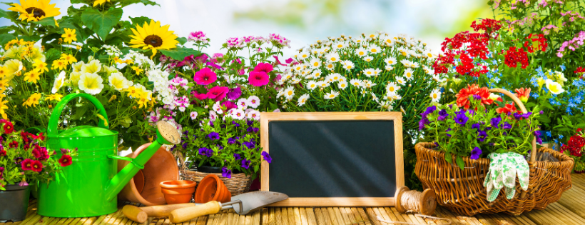 Spring Into The Season : 5 Recommendations for Your Backyard Living Area
