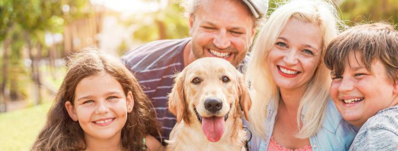 Four-Legged Family: 5 Tips for Celebrating Our Furry Friend