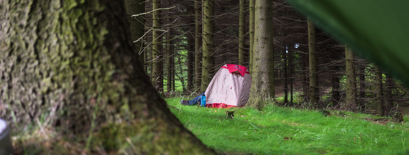 Camp tent in forest